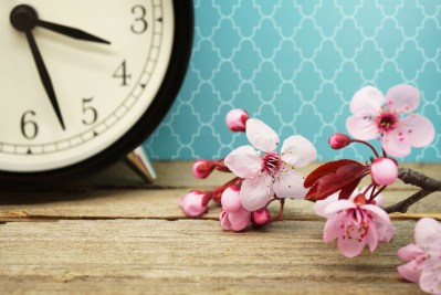 Pink Blossoms and an Alarm Clock on an Old Wooden Table and a Moroccan Pattern Background / Daylight Savings Time Concept