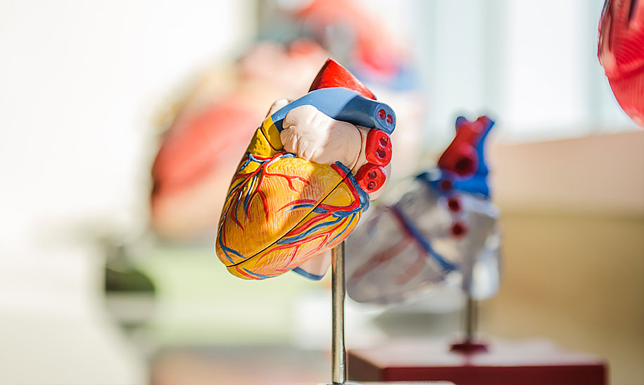 COVID-19 Brings Attention to Cardiometabolic Health