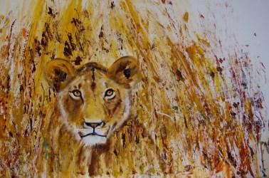 Lioness 91 x 61