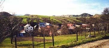Kyjov fields