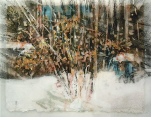"""Winter Bush, Banff. Charcoal on vellum over acrylic on paper, 5"""" x 6.5"""", 2010 SOLD"""