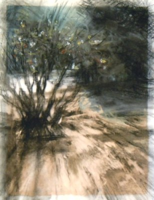 """Winter shadows, Banff. Charcoal on vellum over acrylic on paper, 5"""" x 6.5"""", 2010 SOLD"""