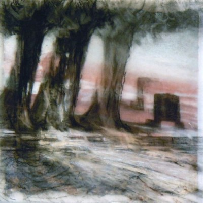 """Three Trees, Banff. Charcoal on vellum over acrylic on paper, 5"""" x 5"""", 2010 