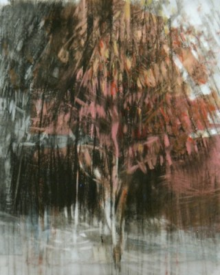 """Raining Tree. Charcoal on vellum over acrylic on paper, 7.5"""" x 6"""", 2013 