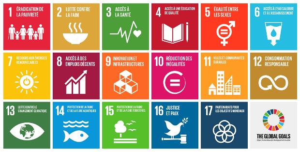 Objectifs de développement durable (ODD)