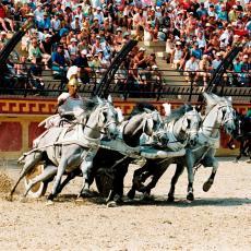 spectacle gladiateur