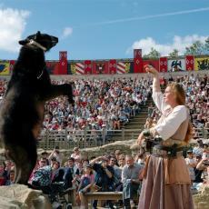 eleveur d'ours puy du fou