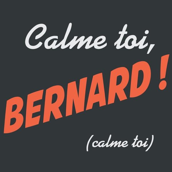 Calme-toi Bernard