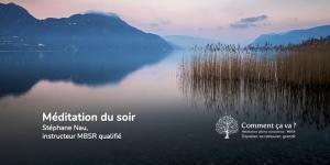 Méditation du soir en ligne gratuite (ZOOM)
