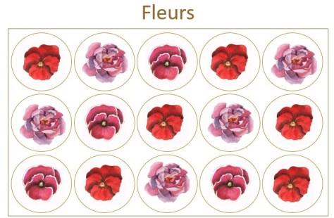 Les Prodigieux fleurs x15