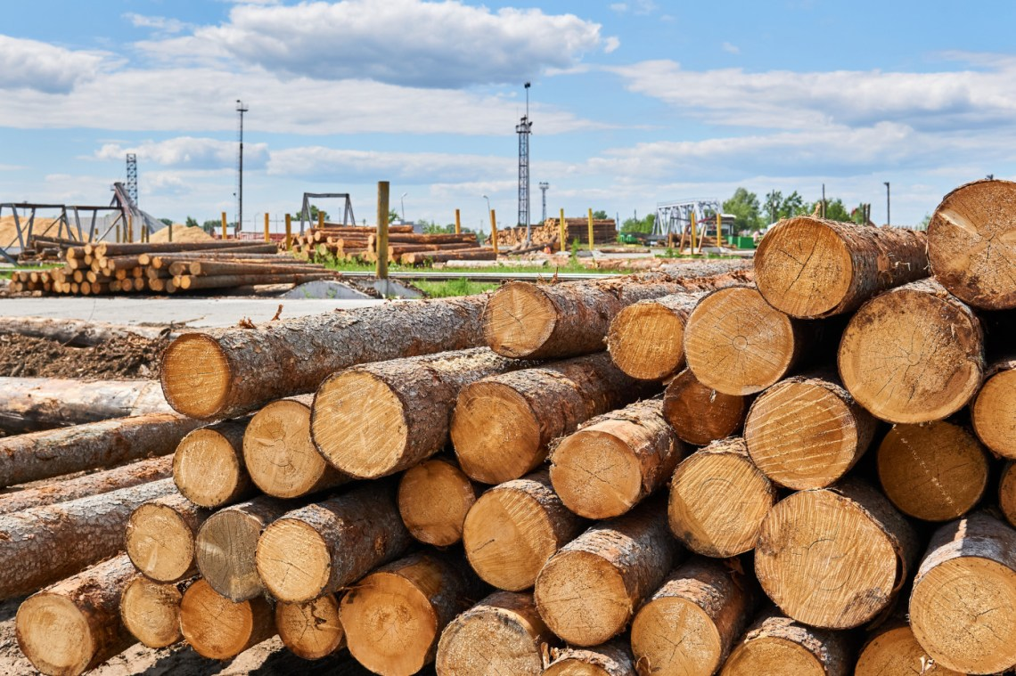 WRI: Global trade of softwood logs fell by 15% in the 1H 2020