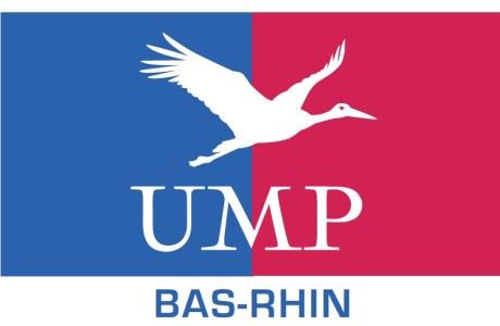 Consultation des adhérents de l'UMP sur la réforme des Statuts – Scrutin des 28, 29 et 30 juin 2013