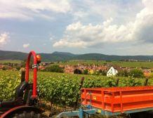 Crise agricole : déclaration de Nicolas Sarkozy
