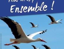 L'UMP 67 s'engage pour un Conseil d'Alsace, plus vite, plus loin, ensemble