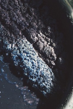 Bain d'indigo (Source : Good Weaver)