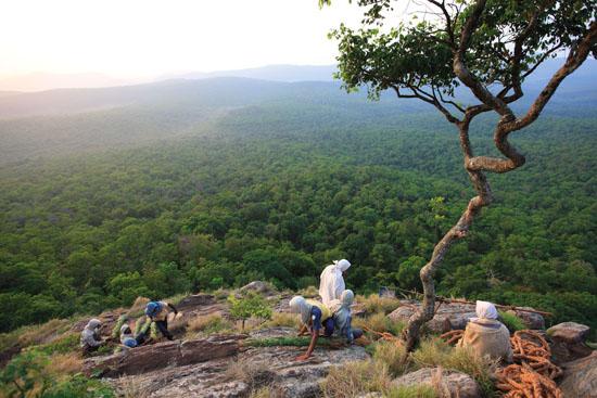 INDE – État du Tamil Nadu, Biosphère des Nilgiris