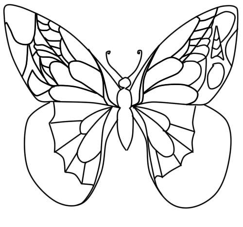 Kuinka piirtää perhonen vaiheittainen lyijykynä vaihe 8