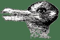 Anatra coniglio di Jastrow