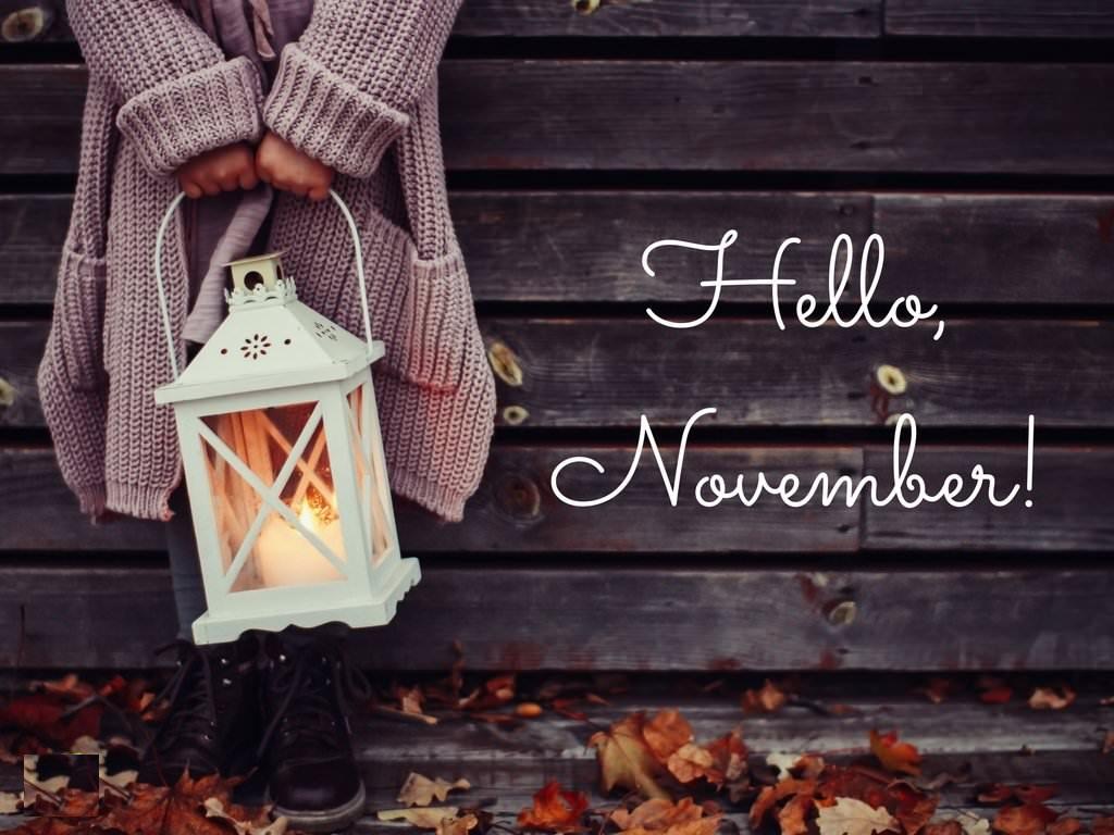 Hello November Les Tribulations De Coco