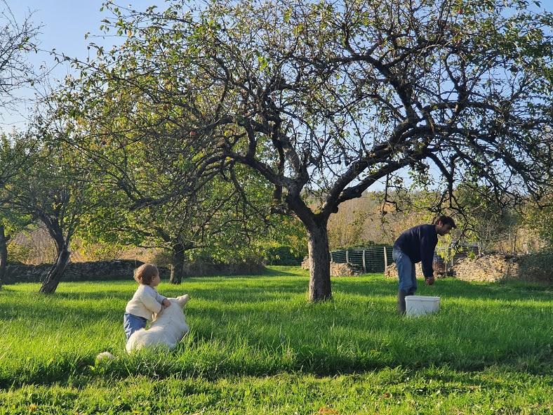 Read more about the article Planter un arbre pour déconfiner le futur…