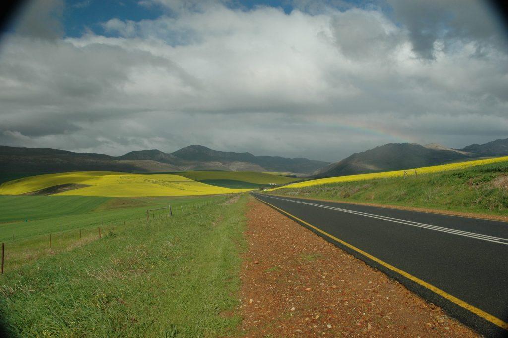 Afrique du Sud 94
