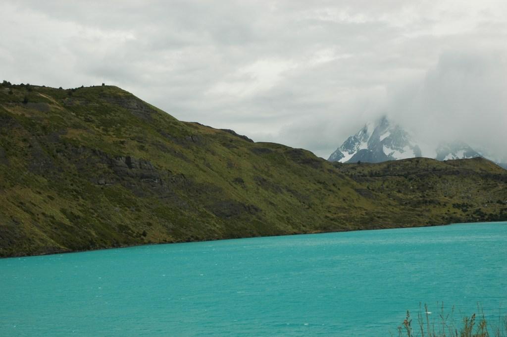 Chili 81