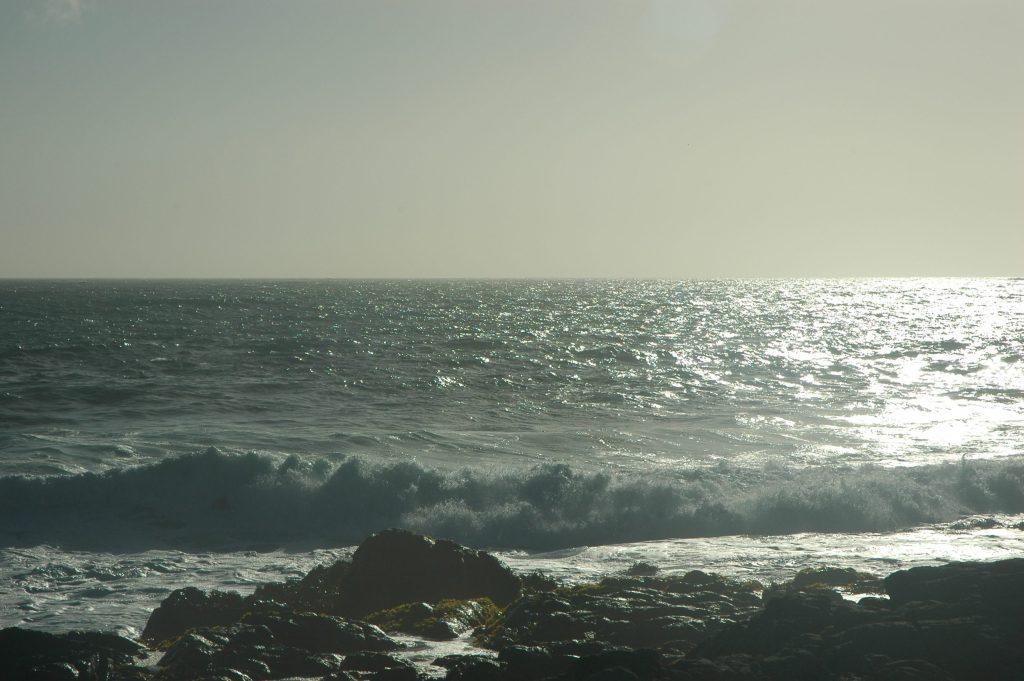 Chili 7