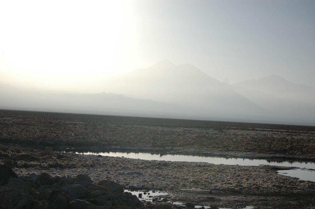 Chili 35