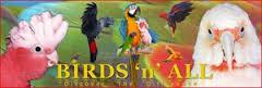 birds n all