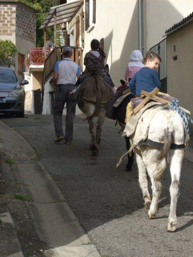 Promenade à dos d'ânes