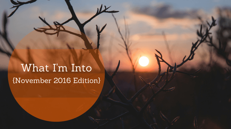 What I'm Into (November 2016 Edition)