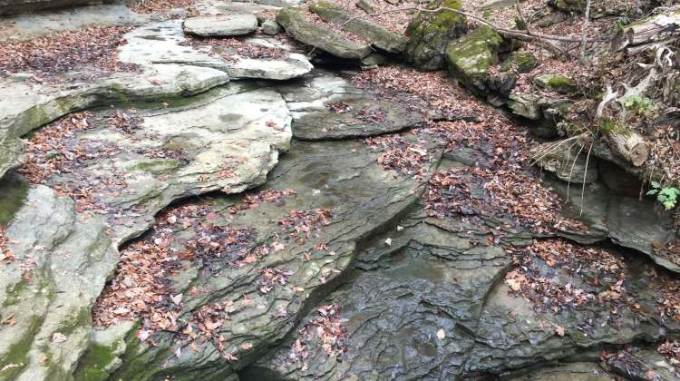 Clifty Falls State Park and Clifty Inn in Madison, IN