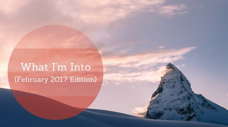 What I'm Into (February 2017 Edition)