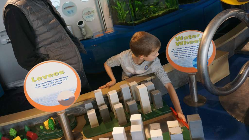 Chicago Museums for Kids - Peggy Notebaert Nature Museum water table