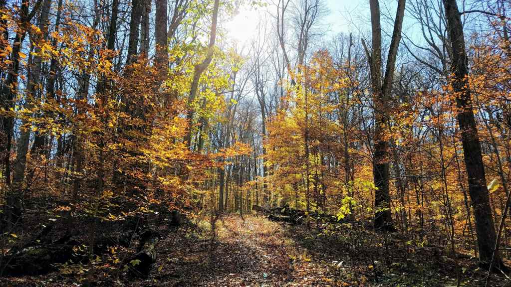 Fall Weekend Getaway Indianapolis - Fort Harrison State Park