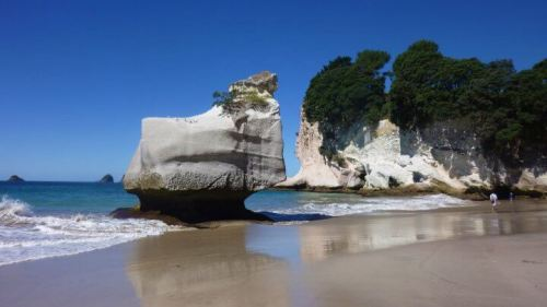 Baie de cathedral cove