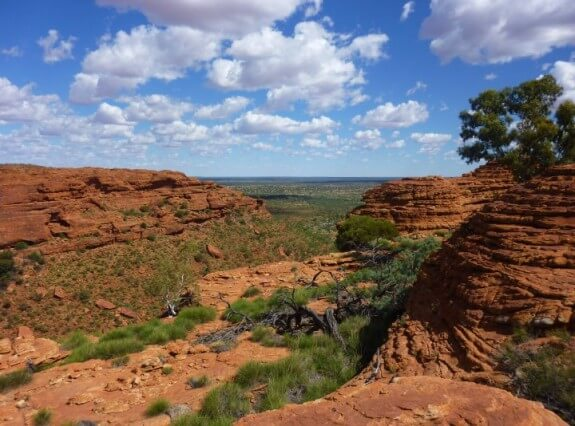 Kings canyon red center