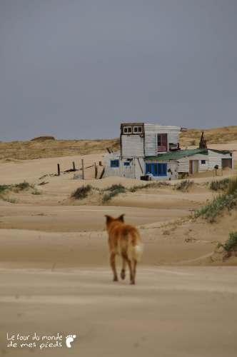 Cabo Polonio Parc national Reserve naturelle