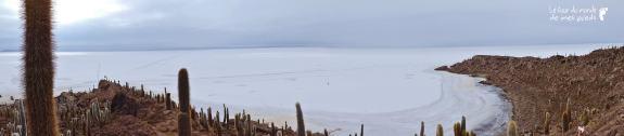 Isla del pescados bolivie