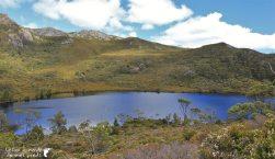 Cradle-park-tasmanie (6)