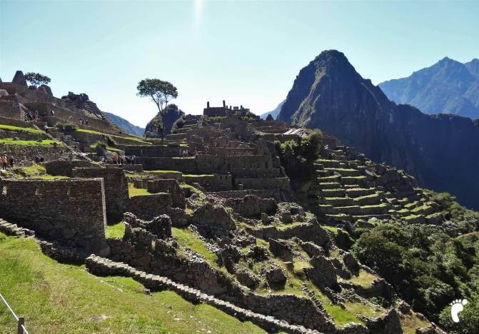 terrasses perou Picchu