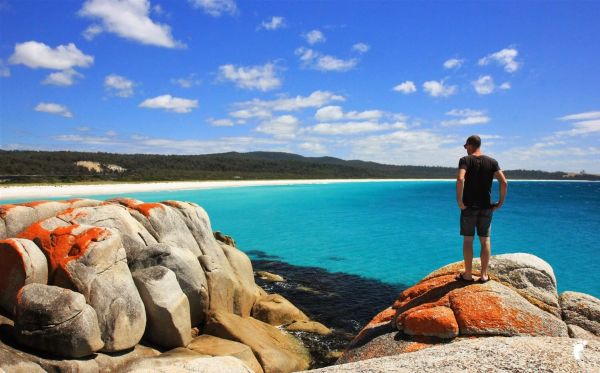 bay of fires roche