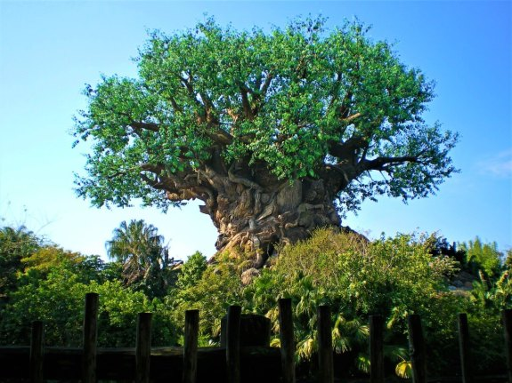 Tree Of Life Disney