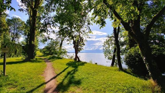 Lac Leman Anthy