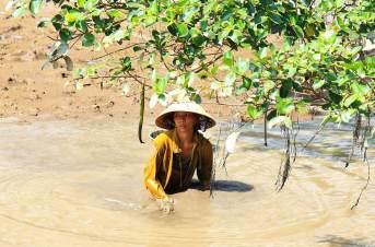 femme pêcheuse vietnam