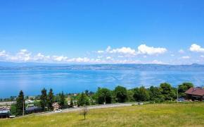 Panorama Lac Léman l'X