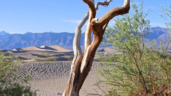 dunes vallée de la mort