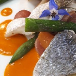 Plat principal: Filet de vieille, pommes de terre Délicatess nouvelles, légumes frais et sauce au piquillos