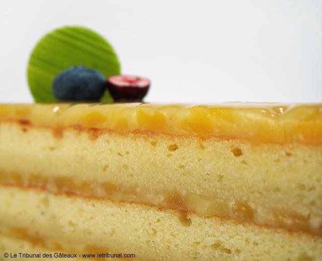 nicolas-bernarde-cake-mangue-coco-citron-3-tdg