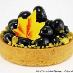 [New York] Chapitre 9: Le Luxe – Tarte aux Myrtilles par Pomme Palais